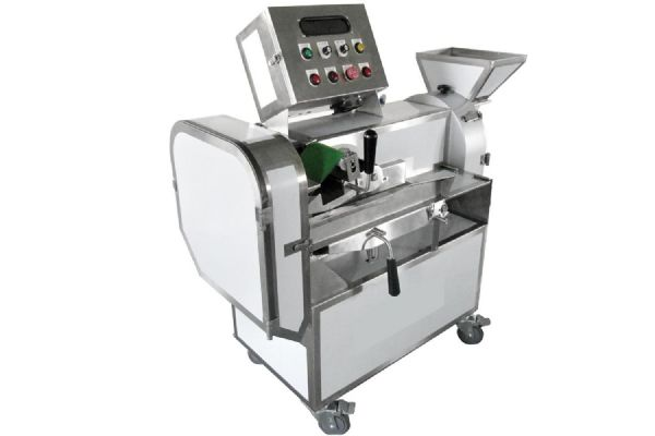Vegetable Washing and Chopping Machine